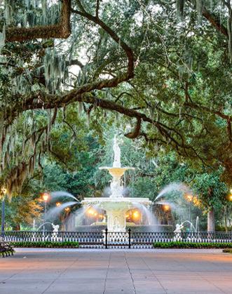 Water Fountain Savanah